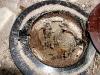 Porta cebo comido por termitas